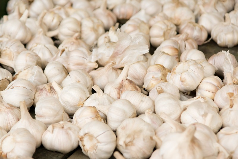 Fresh Garlic $ 3.99/lb