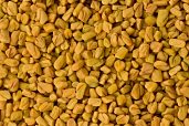 Fenugreek Seeds 7 oz