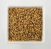 Corriander Seeds 14 oz