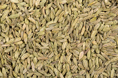 Fennel Seeds 14 oz